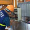 sửa chữa plc tại Hưng Yên
